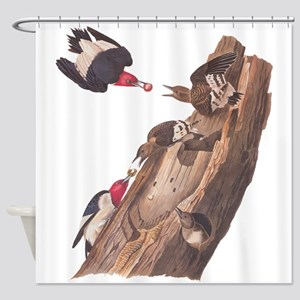 Red Headed Woodpeckers Shower Curtain