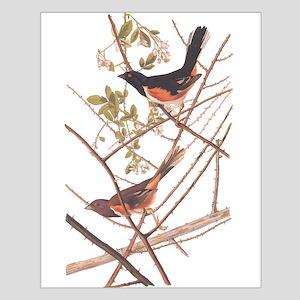 Towee Bunting Birds Audubon Vintage Art Posters