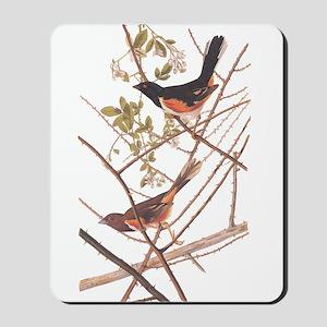 Towee Bunting Birds Audubon Vintage Art Mousepad