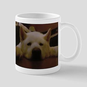akitasoul Mugs