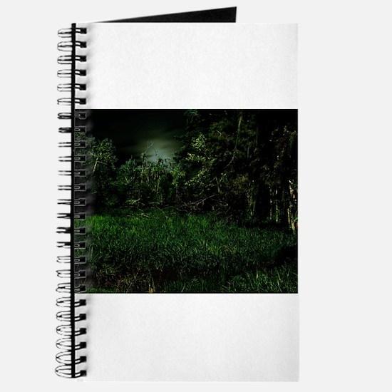 Swamp Journal