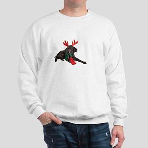 Black Christmas Poodle with Antlers and Sweatshirt