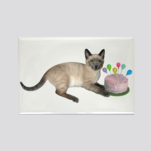 Siamese Kitten Cake Magnets