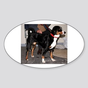 Appenzeller Sennenhund full Sticker