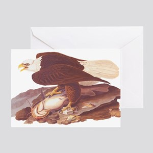 Bald Eagle Vintage Audubon Art Greeting Cards