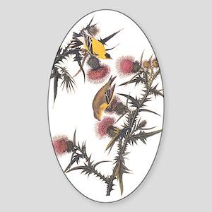 American Goldfinch Birds Audubon Vintage Sticker