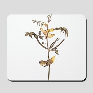 Children's Warbler Bird Vintage Audubon Art Mousep