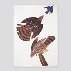 Cooper's Hawk Vintage Audubon Art 5'x7&#39