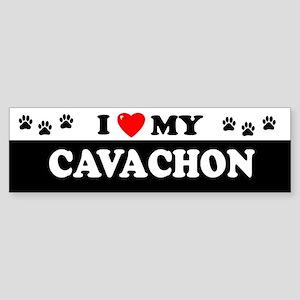 CAVACHON Bumper Sticker