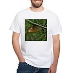 hyrax White T-Shirt