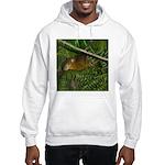 hyrax Hooded Sweatshirt