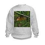 hyrax Kids Sweatshirt