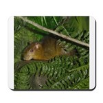hyrax Mousepad