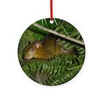 hyrax Ornament (Round)