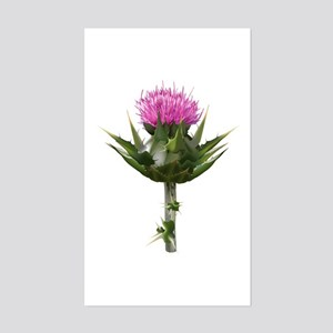 Thorny Thistle Sticker (Rectangle)