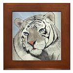 Royal White Bengal Tiger Framed Tile