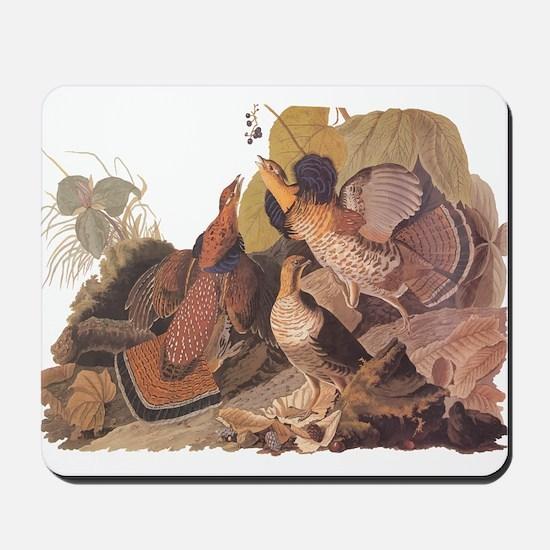 Ruffed Grouse Vintage Audubon Art Mousepad