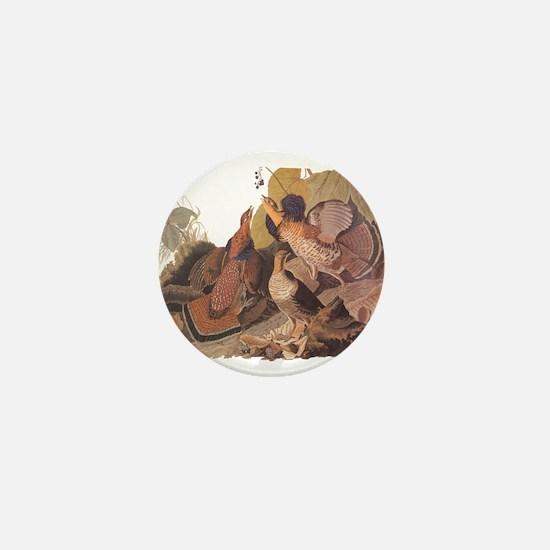 Ruffed Grouse Vintage Audubon Art Mini Button