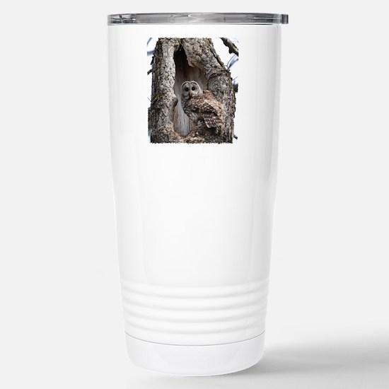 Owl On Edge Of Nest Stainless Steel Travel Mug