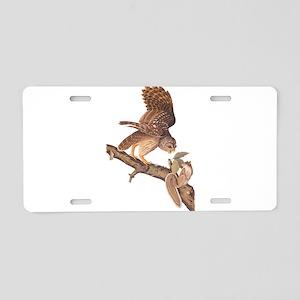 Owl and Squirrel Vintage Audubon Art Aluminum Lice