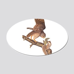 Owl and Squirrel Vintage Audubon Art Wall Decal