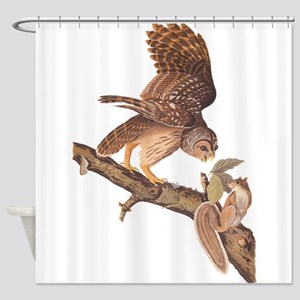 Owl and Squirrel Vintage Audubon Art Shower Curtai