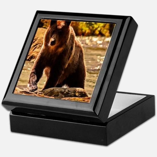 Bear On Log Keepsake Box