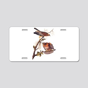 Red Shouldered Hawk Vintage Audubon Art Aluminum L