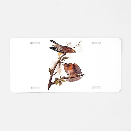 Red Shouldered Hawk Vintage Audubon Art Aluminum L