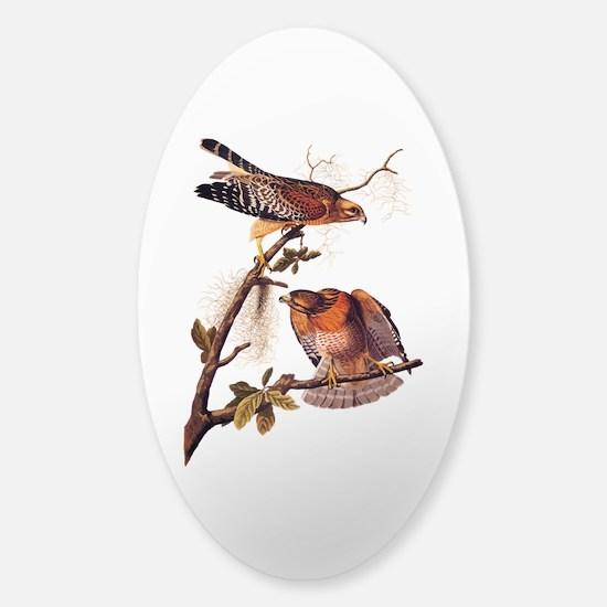 Red Shouldered Hawk Vintage Audubon Art Decal