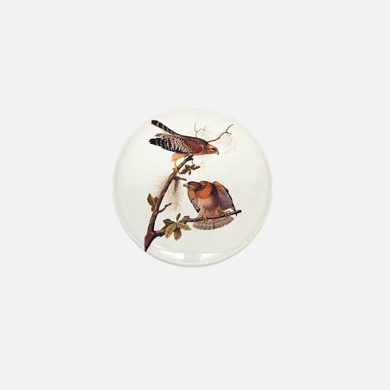 Red Shouldered Hawk Vintage Audubon Art Mini Butto