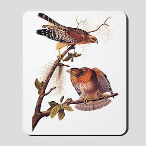 Red Shouldered Hawk Vintage Audubon Art Mousepad