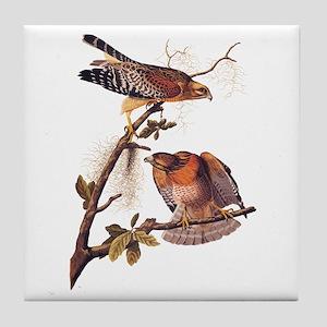 Red Shouldered Hawk Vintage Audubon Art Tile Coast