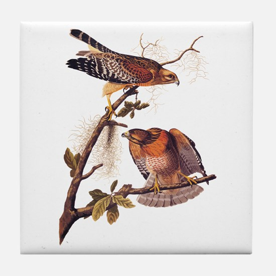 Red Shouldered Hawk Vintage Audubon Art Tile Coast