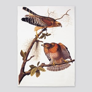 Red Shouldered Hawk Vintage Audubon Art 5'x7'Area