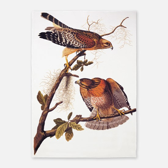 Red Shouldered Hawk Vintage Audubon Art 5'x7'Area