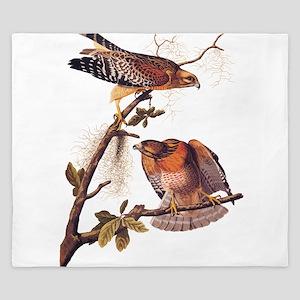 Red Shouldered Hawk Vintage Audubon Art King Duvet