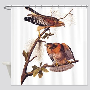 Red Shouldered Hawk Vintage Audubon Art Shower Cur