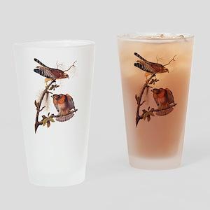 Red Shouldered Hawk Vintage Audubon Art Drinking G