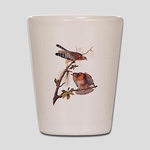 Red Shouldered Hawk Vintage Audubon Art Shot Glass