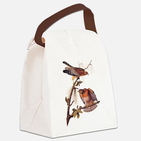 Red Shouldered Hawk Vintage Audubon Art Canvas Lun