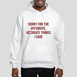 Offensive Accurate Things Hooded Sweatshirt