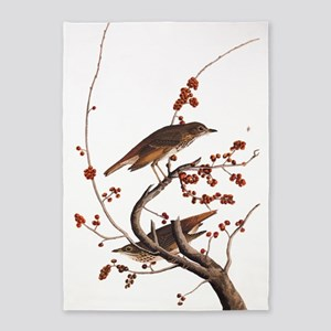 Hermit Thrush Vintage Audubon Art 5'x7'Area Rug