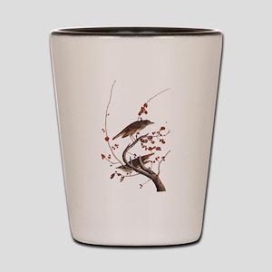 Hermit Thrush Vintage Audubon Art Shot Glass