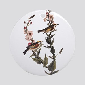Chestnut Sided Warbler Vintage Audubon Art Round O