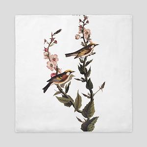 Chestnut Sided Warbler Vintage Audubon Art Queen D