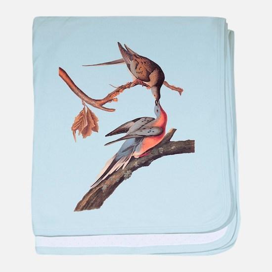 Passenger Pigeon Vintage Audubon Art baby blanket