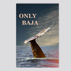 ONLY BAJA WILD SIDE Postcards (Package of 8)