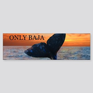 ONLY BAJA Bumper Sticker