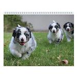 NorCal Aussie Rescue Puppy Calendar